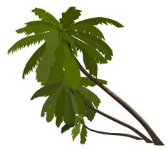 236x211 Palm Tree Clipart Image