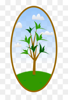 260x380 Landscape Landscaping Tree Clip Art