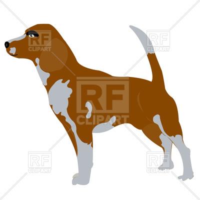 400x400 Beagle Dog Royalty Free Vector Clip Art Image