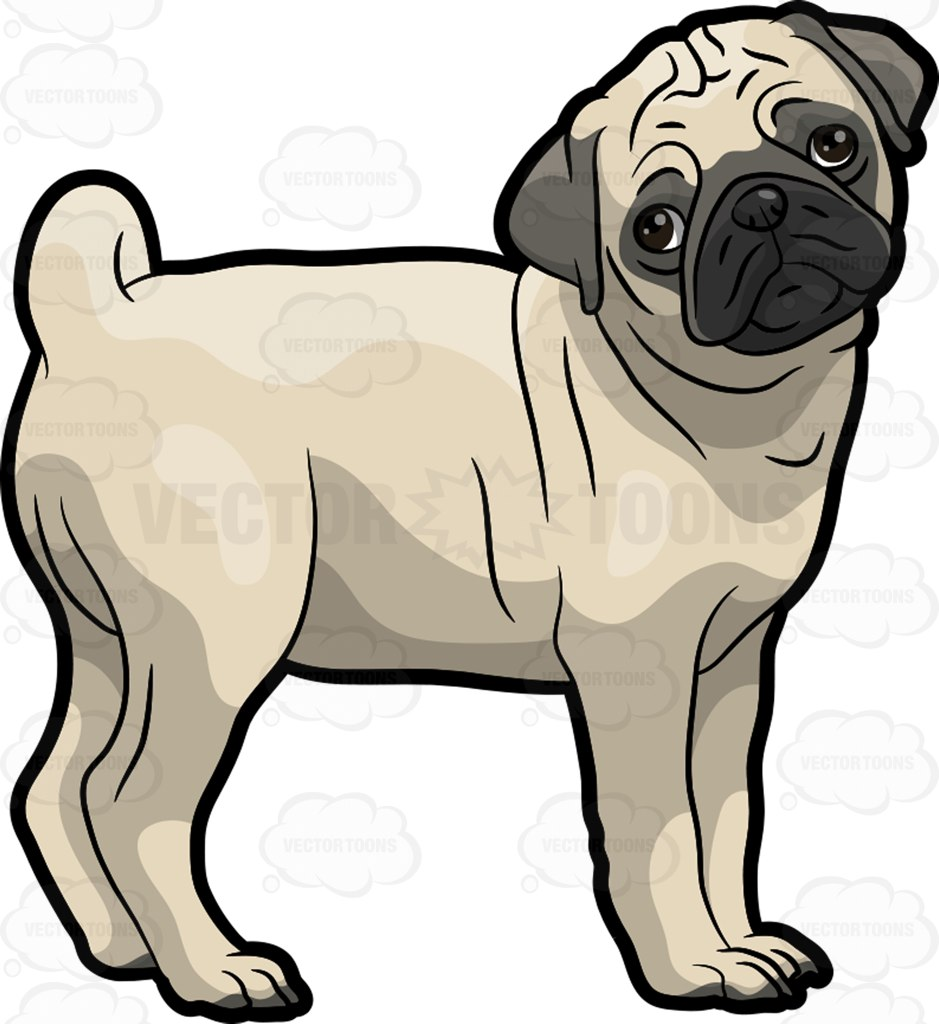 939x1024 Puppy Clipart Cute Pug
