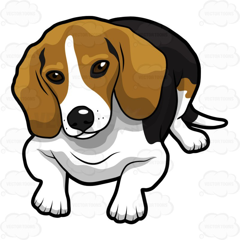 800x800 Beagle Clipart Cute Beagle Lying Down Looking Ahead Cartoon