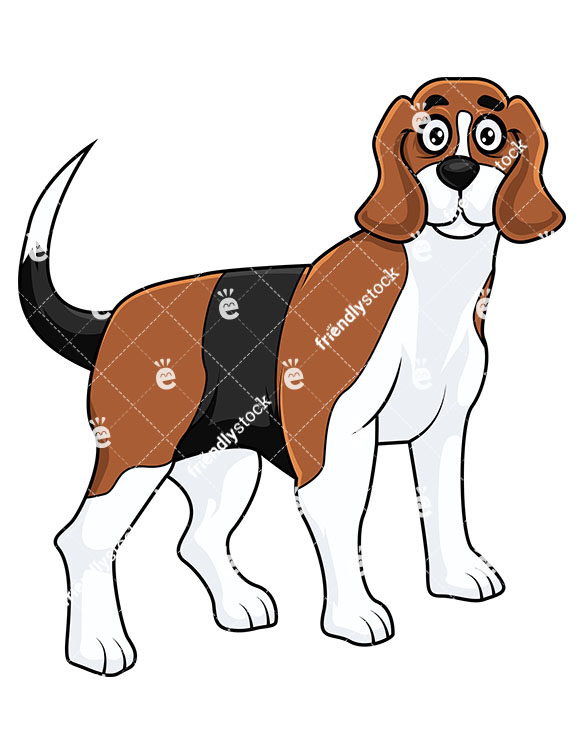 585x755 Beagle Puppy Clip Art Vector And Illustration. 901 Beagle Puppy