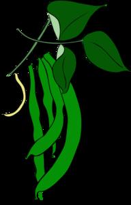 192x300 Green Beans Clip Art
