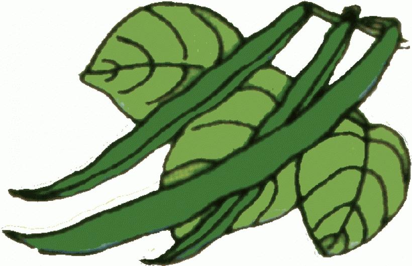 820x531 String Beans Clip Art Clip Art Green Beans String Beans Happy