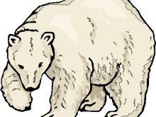 220x165 Polar Bear Clipart Free Art Polar Bear Clipart Clipart Kid 3
