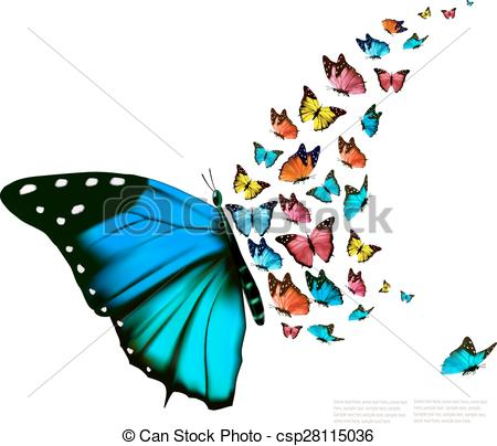 450x404 Beautiful Butterfly Background. Vector.