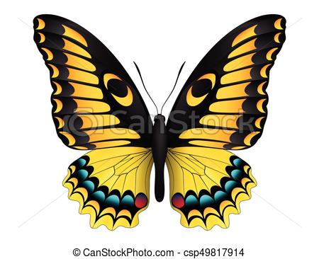 450x366 Beautiful Butterfly Isolated On A White Background . Vector Clip