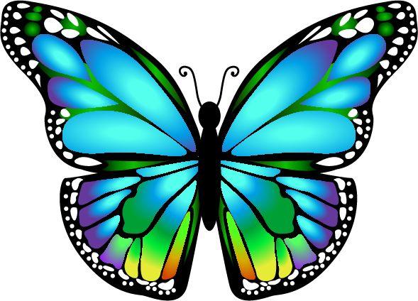 589x424 752 best Batterflies art images on Pinterest Butterflies