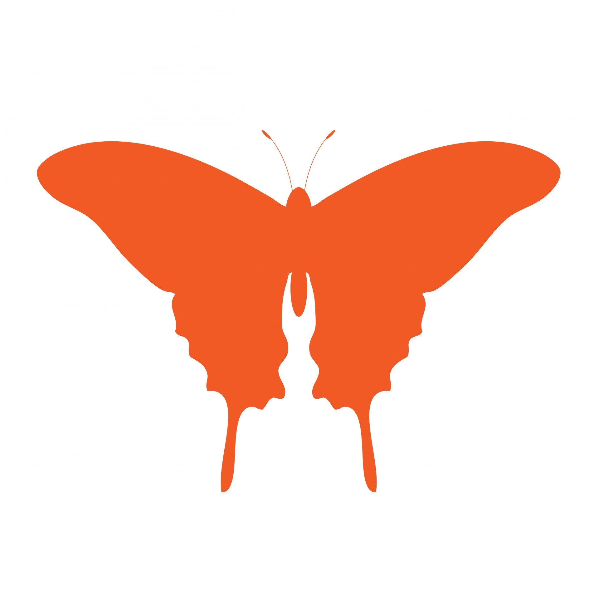 1920x1920 Orange Butterfly Clipart Free Stock Photo