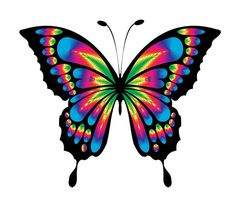 236x202 BUTTERFLY … Pinteres…