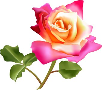 340x300 Beautiful Rose Bouquet Clip Art Collection Flowers Photo Gallery