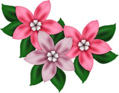 236x185 Pink Flower Decor Png Clipart Beautiful Flowers