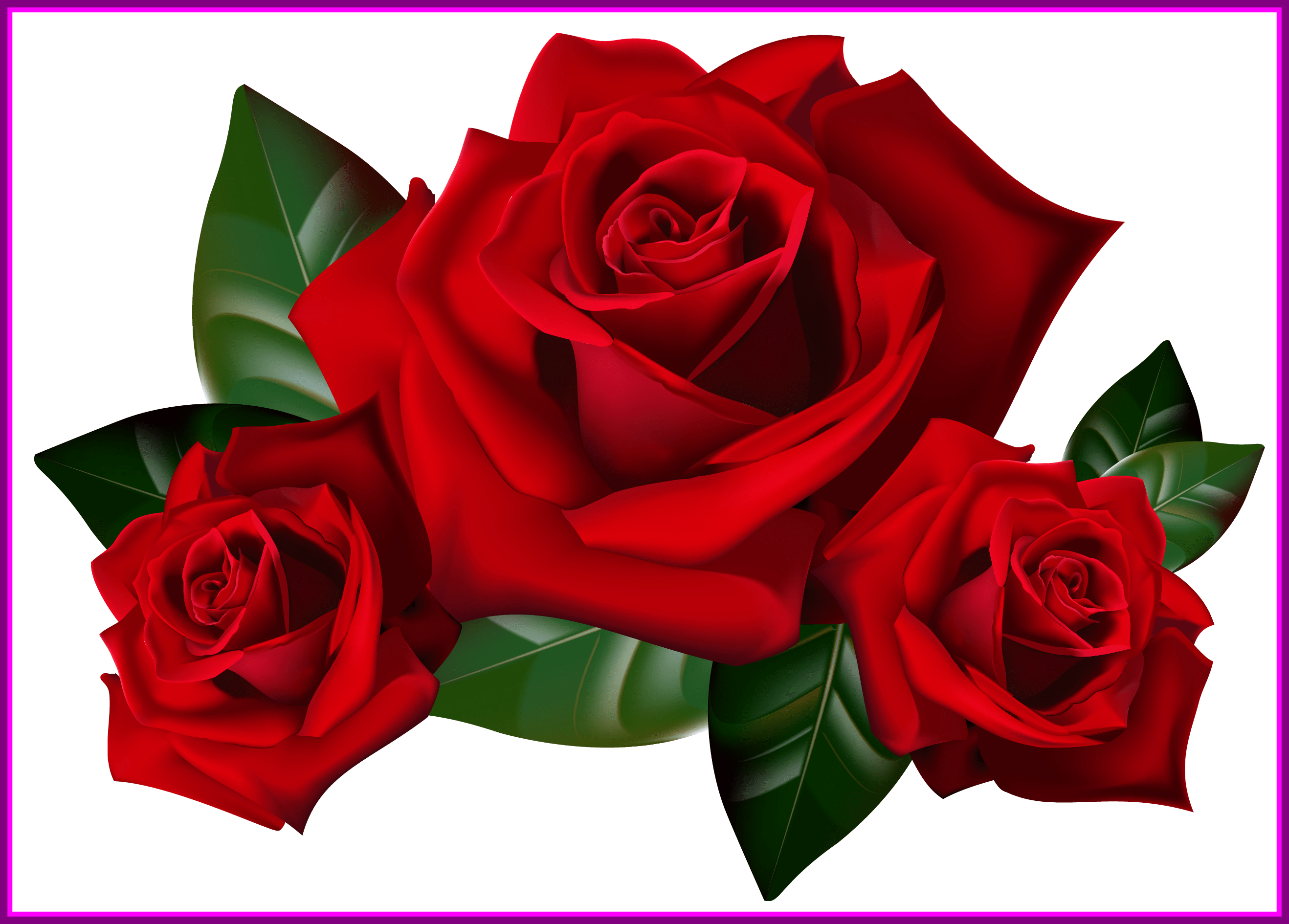 2636x1890 Appealing Bouquet Of Frame Clipart Kid Rose Art Image Flower Trend