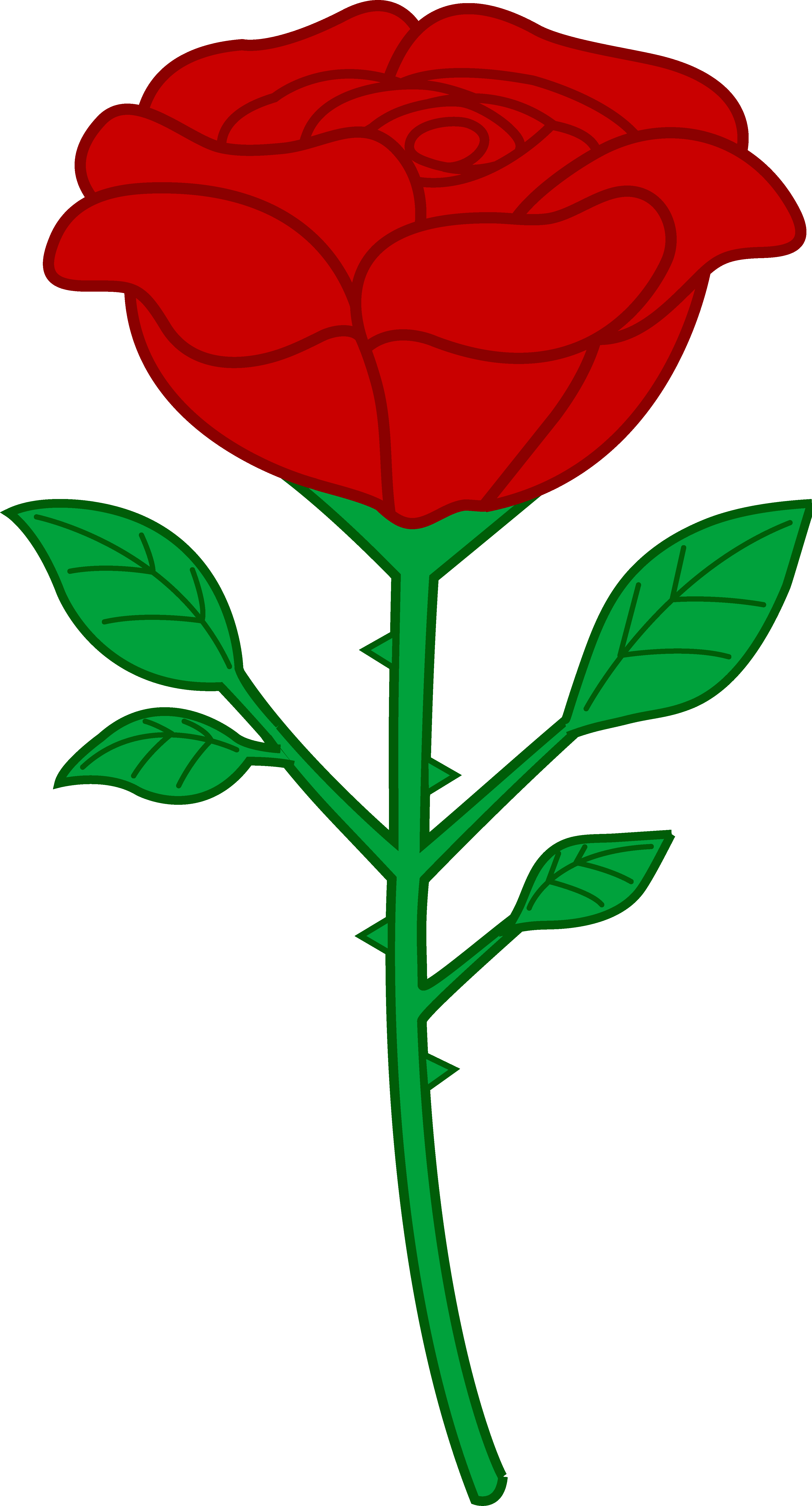3906x7240 Rose Floral Cliparts