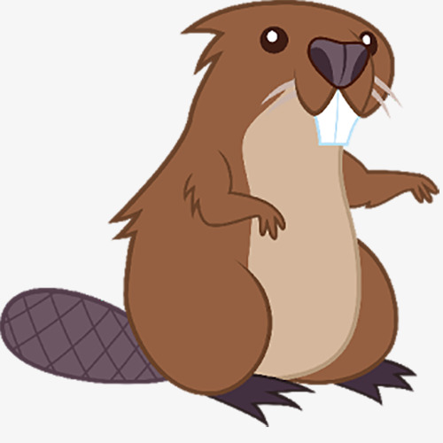 500x500 Brown Beaver, Brown Cute Beaver, Beaver, Animal Png Image