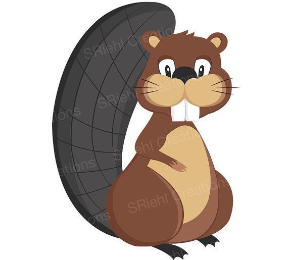 570x515 Woodland Friends Beaver Vector Clip Art Commercial Use Forest