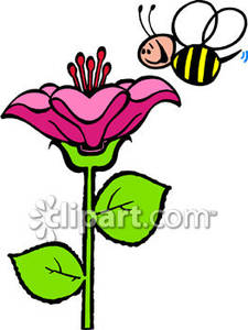 225x300 Smiling Bee With A Big Flower