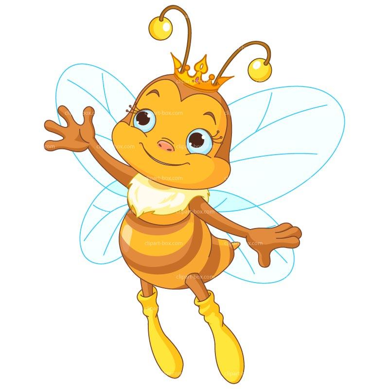 800x800 Honey Bee Clipart Free