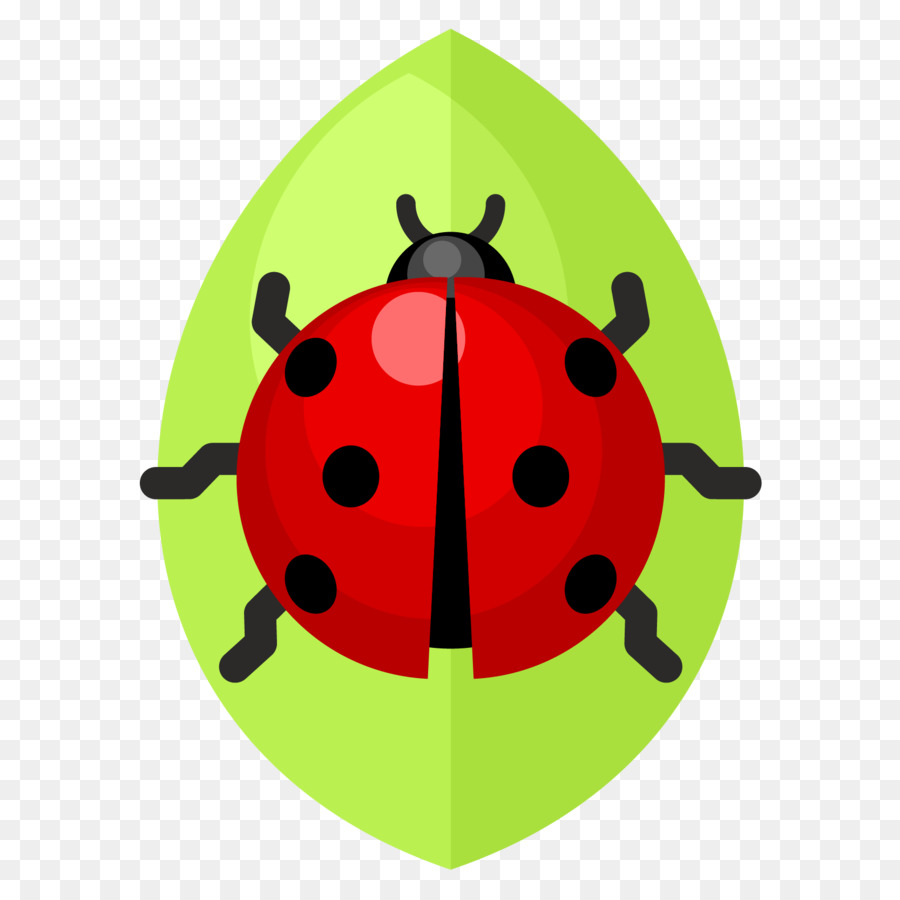 900x900 Beetle Ladybird Clip Art