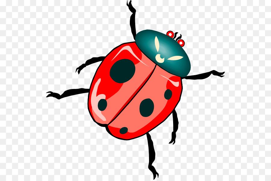 900x600 Beetle Ladybird Free Content Clip Art