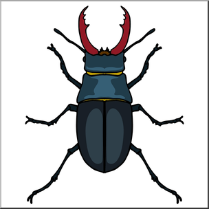 304x304 Clip Art Insects Stag Beetle Color I Abcteach