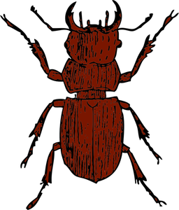 256x300 296 Beetle Bug Clip Art Public Domain Vectors