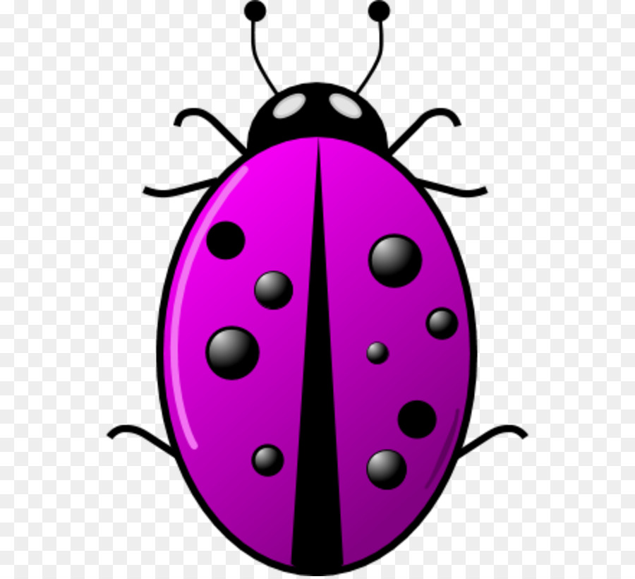 900x820 Beetle Ladybird Clip Art