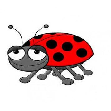 356x356 Beetle Juice Fw