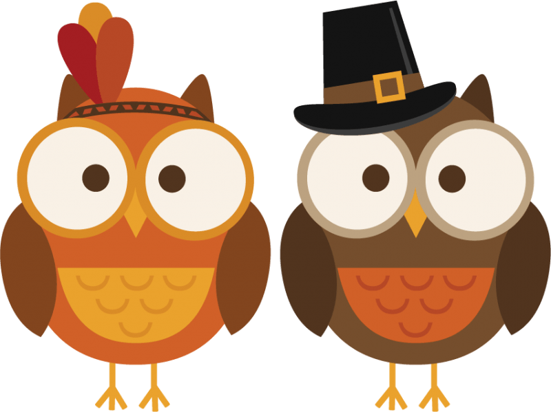 800x599 Thankful Owl Cliparts