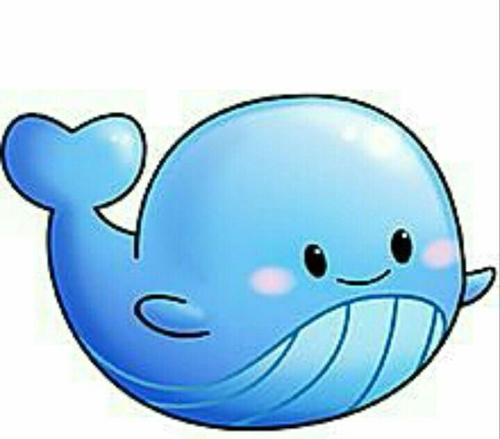 720x632 Stylish Inspiration Ideas Cute Whale Why Are Cartoon Whales So We