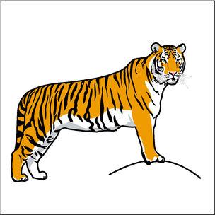 304x304 Clipart Big Cats Cat Cartoon Pencil And In Color