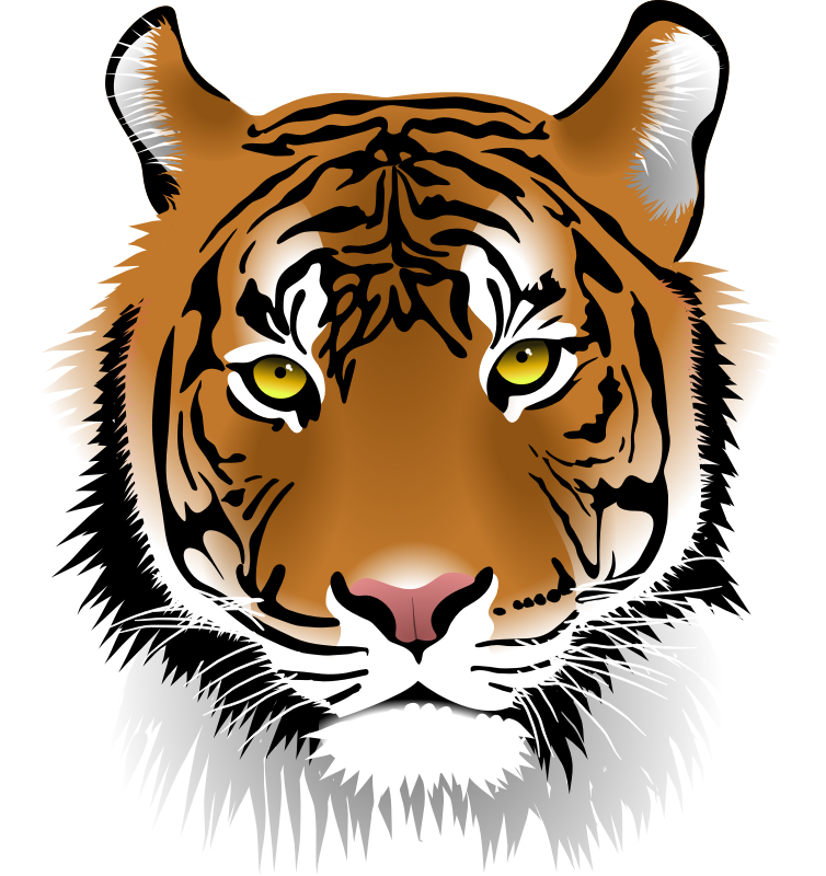 754x800 Tiger Clip Art Images Free For Commercial Use Spanish Classroom
