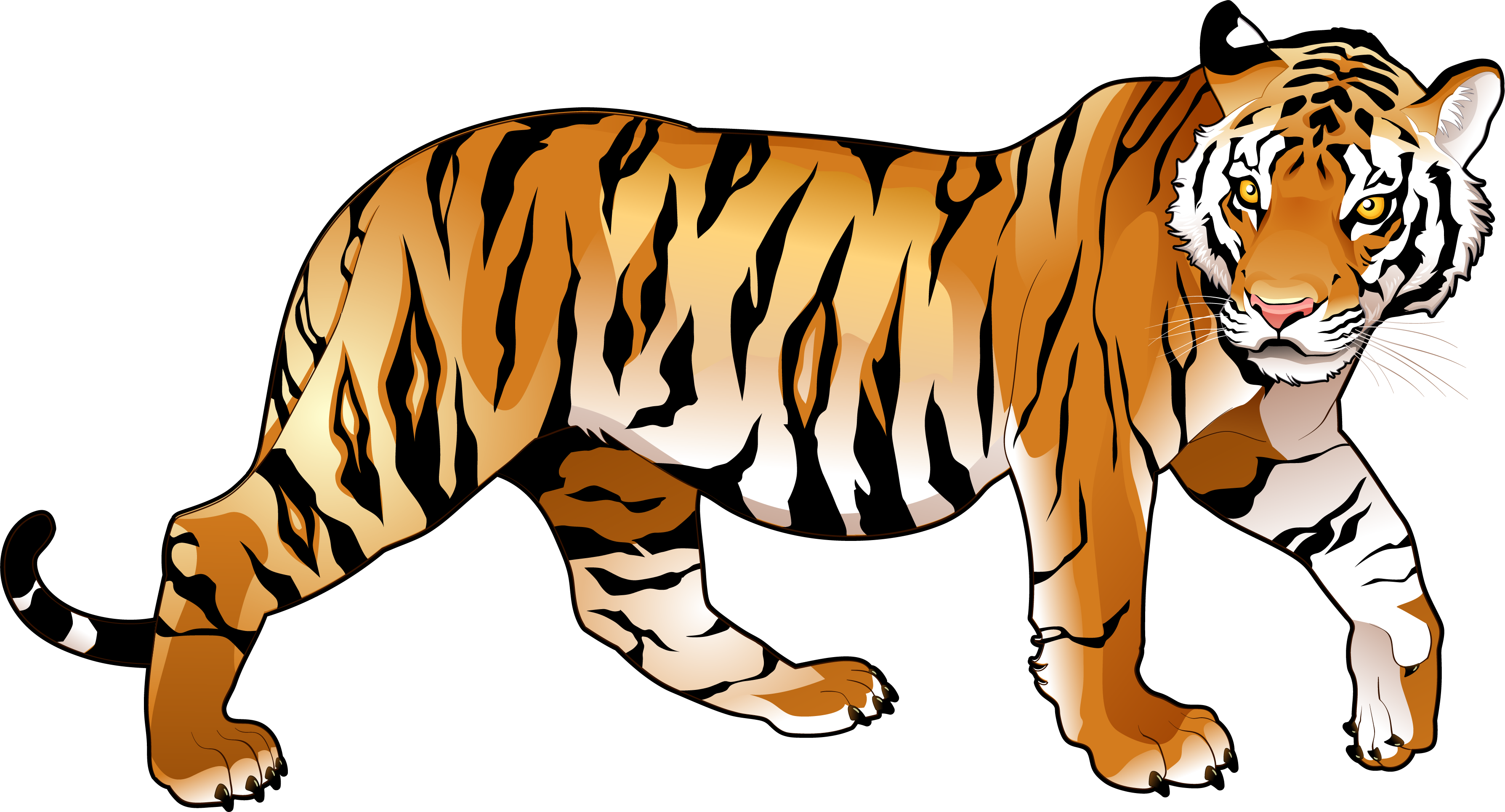 Bengal Tiger Clipart at GetDrawings | Free download