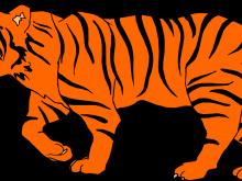 220x165 Bengal Tiger Clip Art Bengal Tiger Clip Art Clipartix Animations