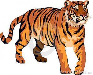300x243 Bengal Tiger Clip Art Tiger Clipart Clip Art Clip Art