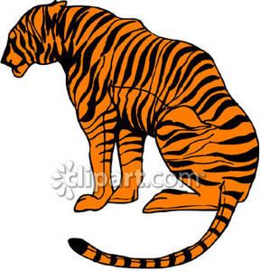 288x300 Sitting Bengal Tiger