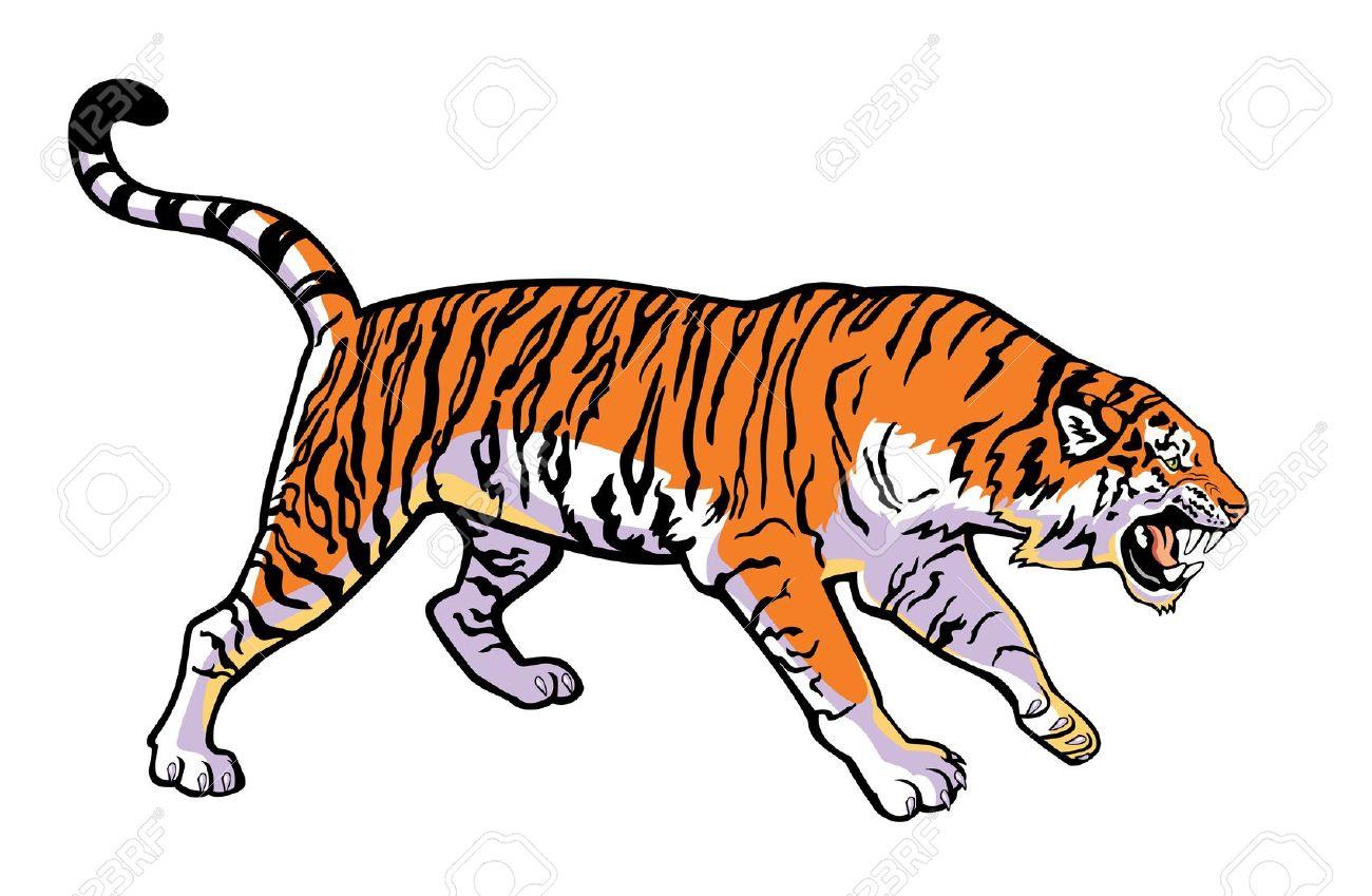 1300x849 Bengal Clipart Siberian Tiger
