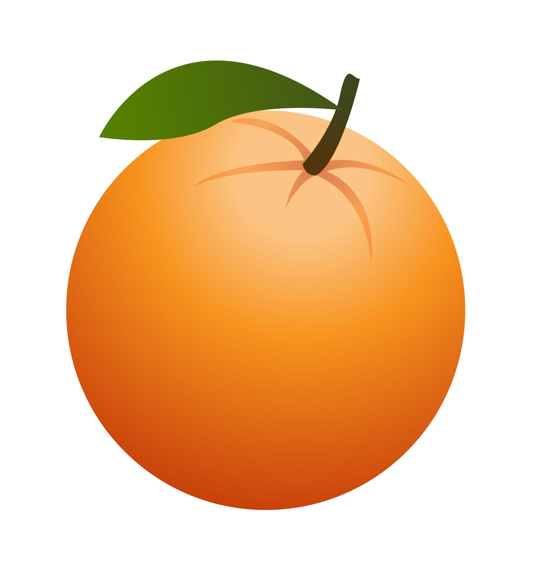 1824x1951 Orange Berries Clipart