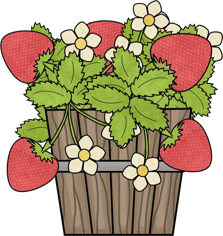 736x780 428 Best Strawberrys Forever Images On Clip Art
