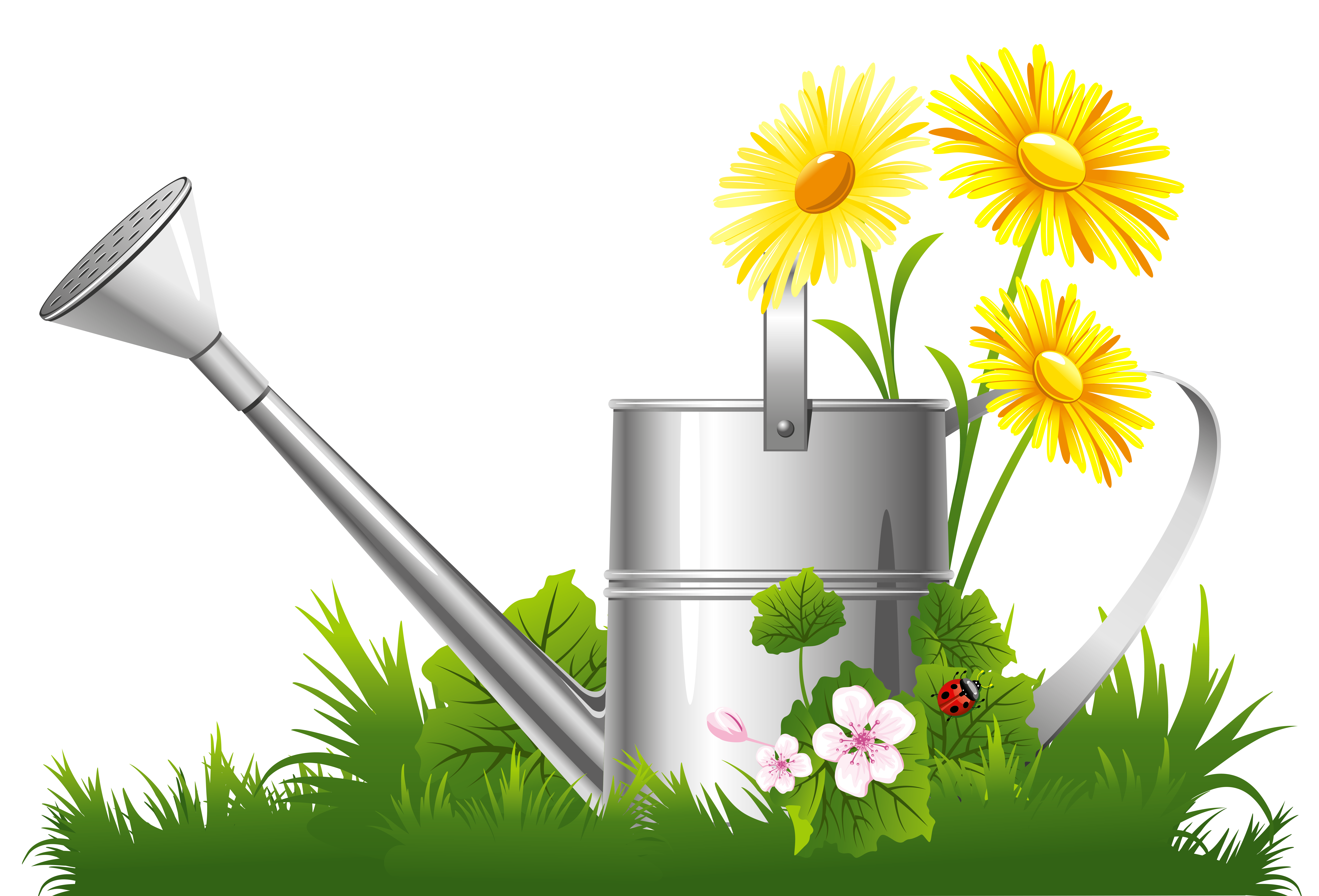 9348x6350 Spring Decoration With Water Can Grass And Flowers Png Clipart
