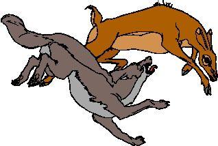 318x214 Best Wolves Clipart Wolves