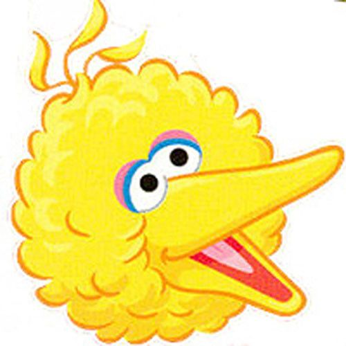 500x500 Sesame Street Big Bird Face Plaza Sesamo Big Bird