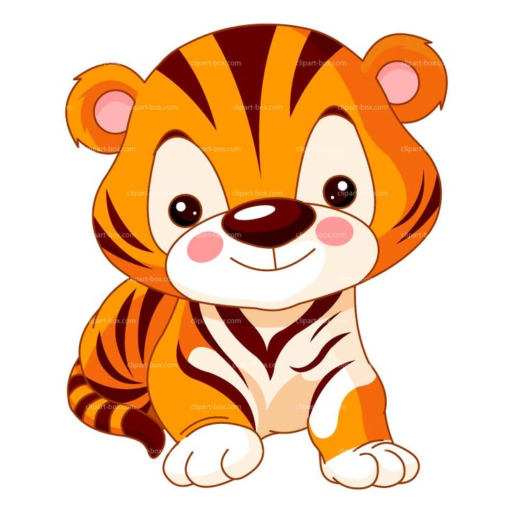 736x736 628 Best All Clip Art Zoo Images On Jungle Animals