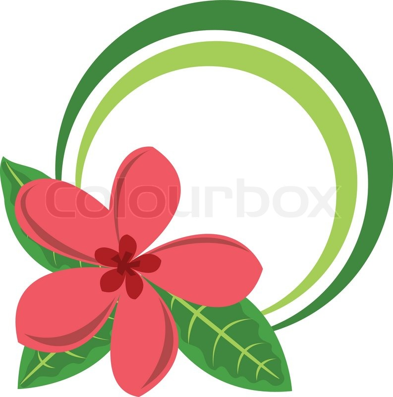 793x800 Circle Color Frame With Big Tropical Flower Vector Illustration