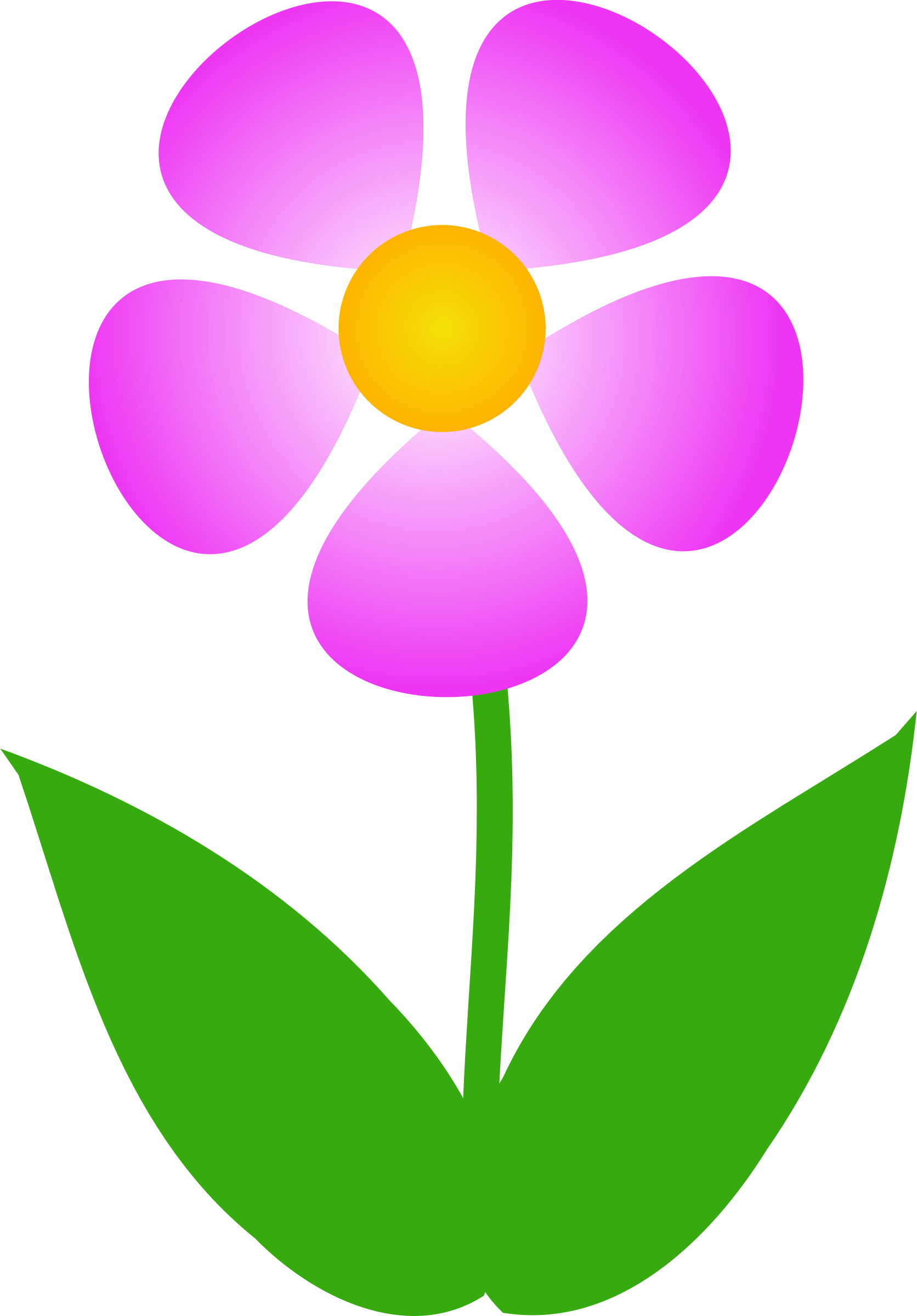 1672x2400 Pink Flower Clipart Images