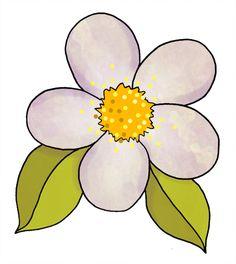 236x264 White Flowers Clip Art Daisy Clip Art Images Daisy Stock Photos
