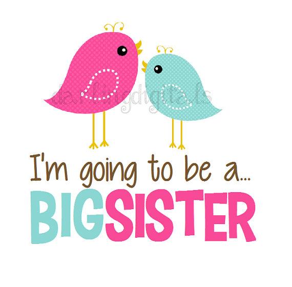 570x560 Instant Download Birdie Big Sister Pink Aqua Birds