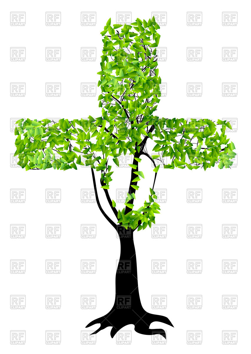 853x1200 Abstract Christian Cross As Tree Isolated On A White Background