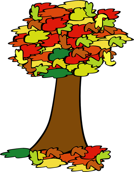 560x720 Free Tree Clipart Images And Pictures