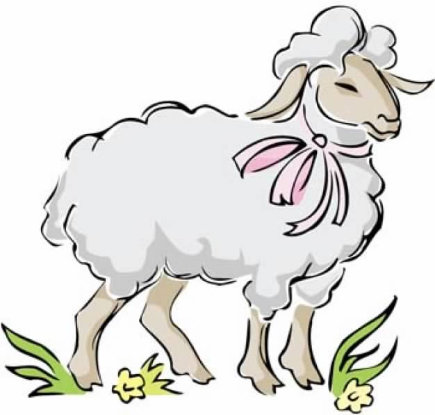 626x597 Sheep Clipart Front View Free Collection Download And Share